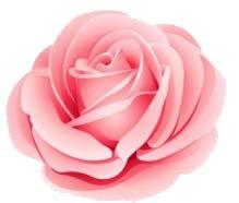Stix stemz event planning floral design flower icon mightylinksfo Choice Image